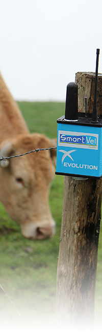 Gamme SmartVel