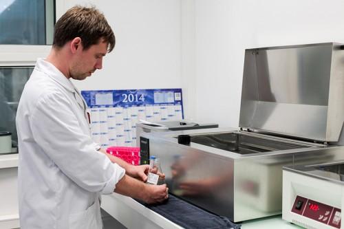 Une fois sa qualité certifiée, le prélèvement est mélangé à un dilueur destiné à nourrir et protéger les spermatozoïdes.